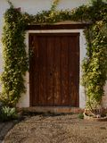 Porta de madeira rústica, cercada escalando plantas cor-de-rosa Fotografia de Stock Royalty Free