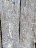 Porta de madeira velha sem pintura imagem de stock royalty free
