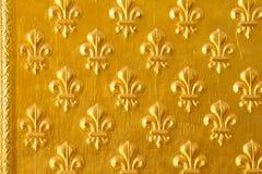 Porta de Ornated com teste padrão de flor dourado decorativo Fotos de Stock