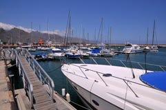 Porta de Santa Cruz em Tenerife Imagens de Stock