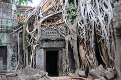 Porta del tempiale, Ankor Wat Fotografia Stock