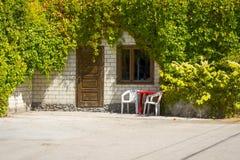 Porta di entrata in casa invasa con la vite Fotografia Stock Libera da Diritti