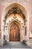 Porta di legno di Brown Fotografia Stock