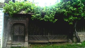 Porta di legno tradizionale di Saxon fotografie stock libere da diritti