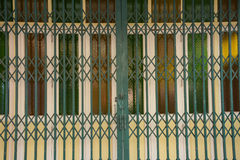 Porta di vetro di fantasia con la porta verde del ferro Immagine Stock Libera da Diritti