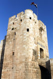 Porta dianteira da citadela de Aleppo, Síria foto de stock royalty free