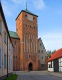 Porta do castelo, estilo gótico. Fotografia de Stock Royalty Free