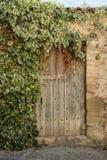 Porta e hera Imagem de Stock