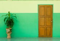 Porta e parete verde con la pianta Fotografie Stock