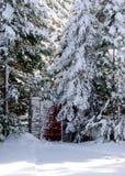 Porta em madeiras de uma neve Fotos de Stock
