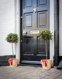 Porta entre um par Holly Plants em umas cubetas de madeira Fotografia de Stock