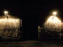 Porta escura Imagem de Stock