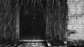 porta favolosa Fotografie Stock