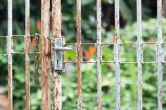 A porta grelhada protege toda a coisa na casa Imagem de Stock Royalty Free