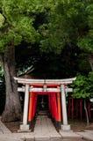 Porta japonesa - Torii imagem de stock royalty free