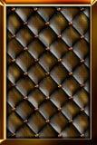 Porta nel telaio dorato Fotografie Stock Libere da Diritti