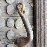 Porta, punho do metal e parafusos de madeira medievais Imagem de Stock