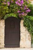 Porta rustica di legno fotografia stock