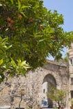 Porta sant'Agata, Palermo, Sicily Fotografia Stock