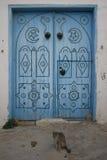Porta tunisina velha com um gato Fotos de Stock Royalty Free