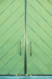 Porta verde de um edifício Fotografia de Stock Royalty Free