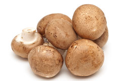Portabella and button mushrooms Royalty Free Stock Photography