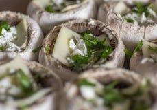 Portabellas asado a la parrilla con queso del queso Edam, queso Feta y el relleno de la albahaca Con la profundidad baja del camp imagenes de archivo
