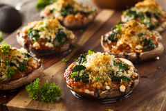 自创被烘烤的被充塞的Portabello蘑菇 免版税库存图片