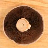 Portabello mushroom. Flat mushroom on wooden board Royalty Free Stock Photography