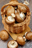 Portabello Mushroom Royalty Free Stock Image