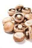 Portabello mushrooms Stock Images