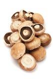 Portabello mushrooms Stock Photography
