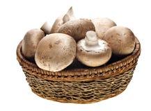 Portabello Mushrooms Stock Image