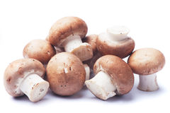 Portabello mushrooms on white background Stock Images