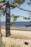 Portable foldable solar panel battery hanging on the outdoors on a pine tree Stock Images