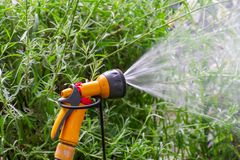 Portable garden automatic plastic pipe irrigation system with a mounted shower spray head watering lawn royalty free stock photography