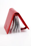 Portable red CD/DVD case. Studio isolated Stock Images