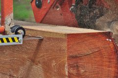 Portable Sawmill. Band saw removing first board from red oak log Stock Photo