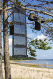 Portable solar panel hanging on a pine tree, and charges the mobile phone in the field conditions Stock Photography