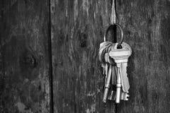 Portachiavi a anello con il tono di legno del fondo del recinto in bianco e nero Immagini Stock