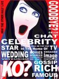 Portada de revista de la celebridad ilustración del vector