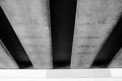Portador sob a ponte Fotos de Stock Royalty Free