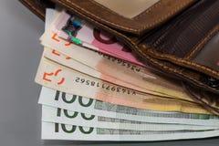 Portafoglio con soldi Fotografia Stock Libera da Diritti