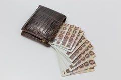 Portafoglio con soldi Immagini Stock Libere da Diritti
