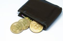 Portafoglio di Bitcoin con le monete su un fondo bianco Immagini Stock Libere da Diritti