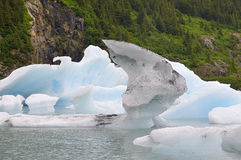 Portage湖冰山 库存照片