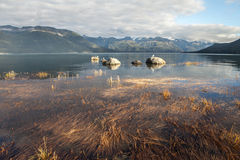 Трава моря бухты Portage в вечере стоковые изображения