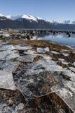 Бухта Portage с ледниковыми щитами стоковые изображения rf