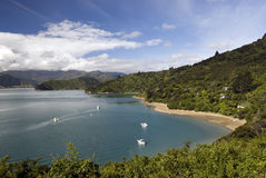 Portage Bay, Marlborough Sounds Stock Image