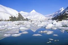Portage glaciär och Portage sjö som sett från den Seward huvudvägen, Alaska Arkivfoto